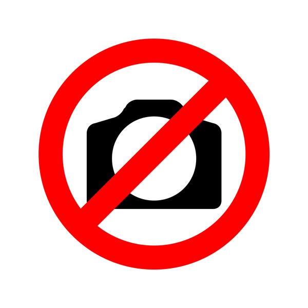 Rebels podcast logo